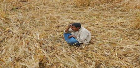 Over 70 lakh T.N. farmers to benefit from income scheme